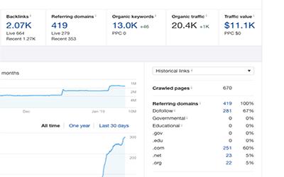 Domain Metrics - Niche Edit Links